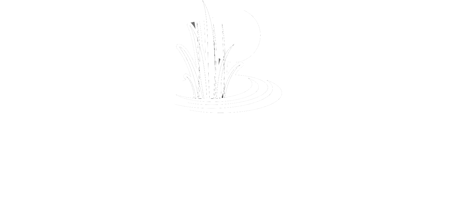 Meadow Lake Music